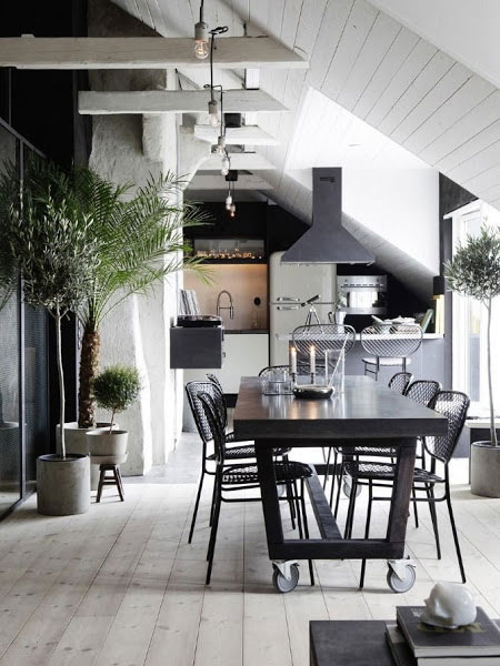 Raw-industrial-apartment3