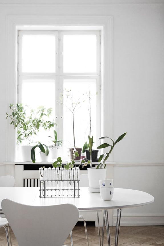 Home-of-Shaun-Russell-of-Skandinavisk-06