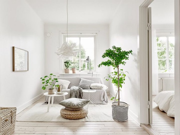 Cute and comfy little home in Sweden_7