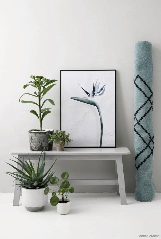 vee-speers-botanica-prints-06
